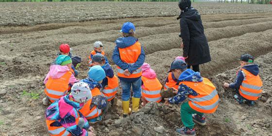 auch-die-kinder-haben-spaß-beim-kartoffel-anbauen