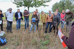 Projekt-Greifswalder-Agrarinitiative-Bienenweide-02