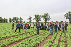 """Projekt """"Greifswalder Agrarinitiative"""" 2016 bis 2019"""