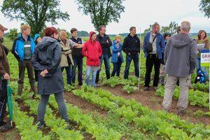 Projekt-Greifswalder-Agrarinitiative-Bienenweide-04